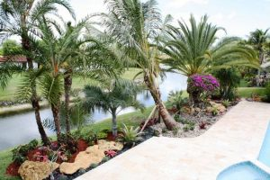 broward-residential-landscaping1-40-_695