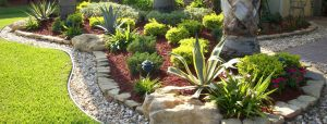 Wide angle rock, stone, mulch bed with Agaves and shrubs